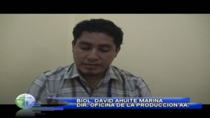 DAVID AHUITE MARINA